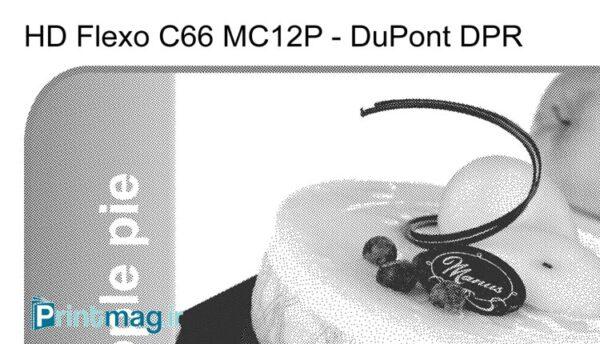 HD Flexo Plate Target 2